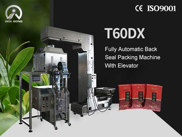 T60DX Fully Automatic Back Seal Packing Machine With Elevat